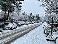 Trabzon Feb 2020 19 34 07 093000.jpeg