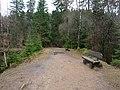 Trail at Silberteich 05.jpg