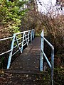 Trail bridge over Colquitz River. READ INFO IN PANORAMIO-COMMENTS - panoramio.jpg