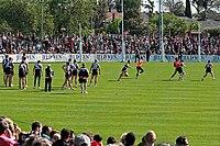 Cvičební cvičení, St Kilda FC 01.jpg