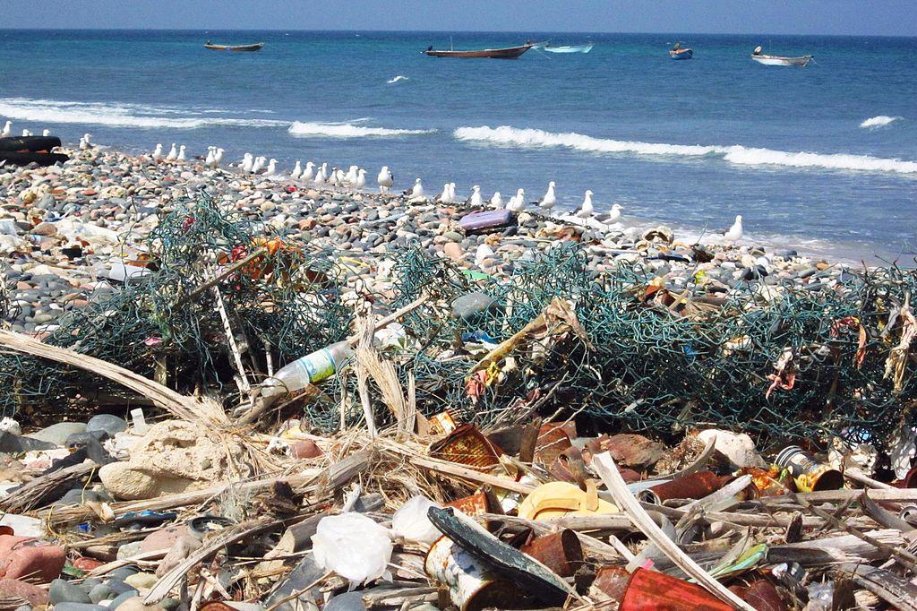 Trash on beach (6408224371)
