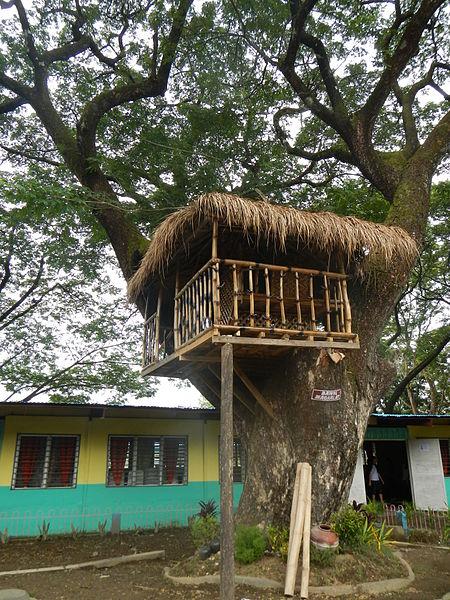 File:Treehousejf.JPG