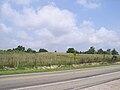 Tremper Mound HRoe 2009 04.jpg