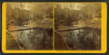 Trout Farm, Meridith, N.H, from Robert N. Dennis collection of stereoscopic views.png