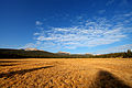 Tuolumne Meadows hdr.jpg