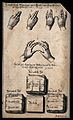 Two hands illustrating sign language with German text Wellcome V0016557.jpg
