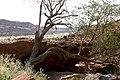 Twyfelfontein, Rock Engraving - panoramio - Frans-Banja Mulder (3).jpg