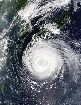 Typhoon Rusa 29 aug 2002 0205Z.jpg