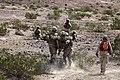 U.S. Marines with Transportation Support Company, Combat Logistics Regiment 2, 2nd Marine Logistics Group, undergo realistic scenarios while executing a combat logistics patrol exercise during Enhanced Mojave 120922-M-KS710-060.jpg