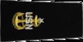 U.S. Navy E8 infobox.png