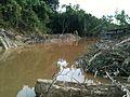 Unnamed Road, 98700 Limbang, Sarawak, Malaysia - panoramio.jpg