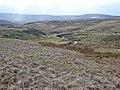 Valley of Annaside Beck and Arkengarthdale Moor - geograph.org.uk - 365341.jpg