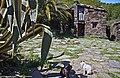 Vaqueirnho - Portugal (38605077631).jpg