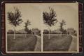 Vassar College, by Aaron Veeder.png