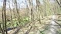 Verőce, 2621 Hungary - panoramio (84).jpg