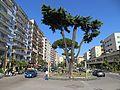 Viale di Augusto - panoramio.jpg