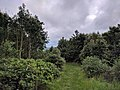 View from the bench (OpenBenches 7449-2).jpg