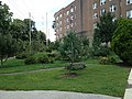 View of Orchard-Garden away from Station House.jpg