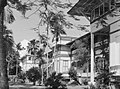 View of buildings and palm trees (AM 78587-1).jpg