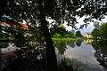 Viktring Stiftspark mit Teich Ostteil 10082009 07.jpg