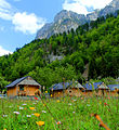 Vila druri në Fshatin turistik - Valbonë.jpg