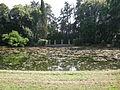 Villa reale di marlia, laghetto 02.JPG