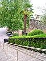 Villabuena - 11.jpg