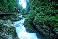 Vintgar Gorge (35001984763).jpg