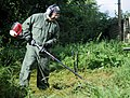 Volunteers help clear garden for local disabled homeowner 120825-F-UA873-322.jpg
