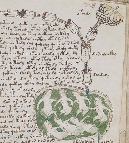 File:Voynich manuscript bathtub2 example 78r cropped.jpg