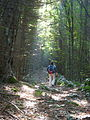 Walkies up the mountains in Triglav National Park (4091935643).jpg