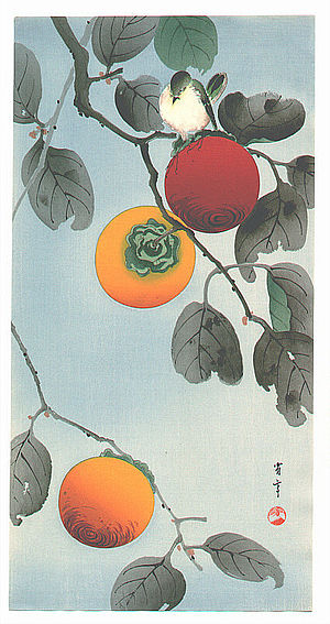 English: Bird on a Persimmon Tree. A Nuthatch ...