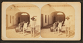 Water Carrier, from Robert N. Dennis collection of stereoscopic views.png