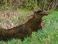 Weilersbach Weilersbachtal -20200419-RM-171526.jpg