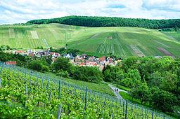 Weinstadt-Strümpfelbac is embedded in vineyards. Woods mark the egde of the plain (in parts) of Schurwald.