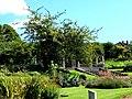 Wensum Park - geograph.org.uk - 1135074.jpg
