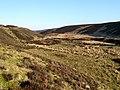 Whiteadder Valley at Johnscleugh - geograph.org.uk - 375570.jpg