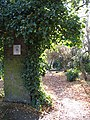 Whitestone Garden - geograph.org.uk - 609310.jpg