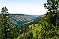 Whitman Overlook, Wallowa Whitman National Forest (23896637265).jpg