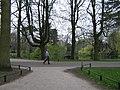 Wilhelminapark2.jpg