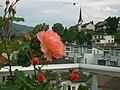 Wittenbach - panoramio.jpg