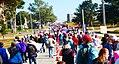 Woman's March Monterey CA.jpg