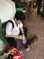 Woman Feeding Cat in Market 20170503.jpg