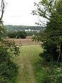 Woodland Fringe - geograph.org.uk - 556474.jpg