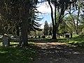 Woodlawn Groves.jpg