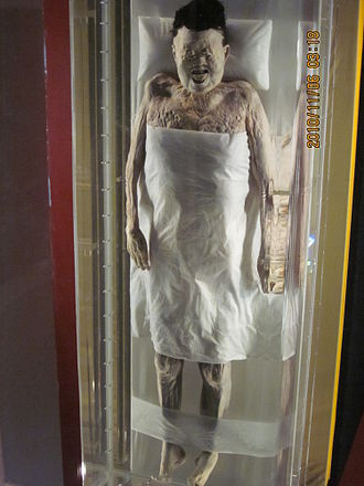 Xin Zhui - The preserved body of Xin Zhui.