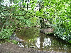 River Yarrow (Lancashire) - River Yarrow in Duxbury Woods
