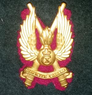 Zealand Air Defence Regiment - Beret insignia for the regiment