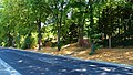 Zehistaer Straße Pirna (43084714044).jpg
