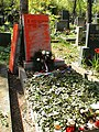 Zneuctěný hrob generála Gajdy 3.jpg